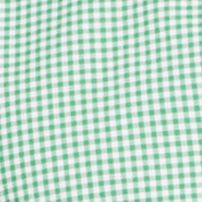 St Patricks Day Outfits For Men: Green Gingham Polo Ralph Lauren POPLIN 102G PERI GING