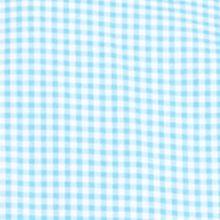 St Patricks Day Outfits For Men: Ligh Blue Gingham Polo Ralph Lauren POPLIN 102G PERI GING