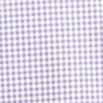 St Patricks Day Outfits For Men: Purple Gingham Polo Ralph Lauren POPLIN 102G PERI GING