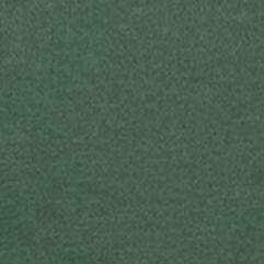 Ralph Lauren Polo Tees for Men: Northwest Pine Polo Ralph Lauren Custom-Fit Graphic T-Shirt