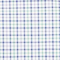 Mens Big and Tall Casual Shirts: Check & Plaid: Purple/Lime Multi Polo Ralph Lauren Big & Tall Checked Poplin Shirt