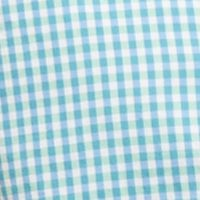 Mens Designer Casual Shirts: Summer Green Nautica Long Sleeve Poplin Gingham Button Down Shirt