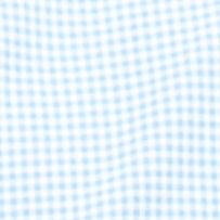 Men: Nautica Casual Shirts: Provence Nautica Long Sleeve Mini Check Oxford Button Down Shirt