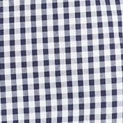 Men: Lacoste Casual Shirts: Navy Blue/White Lacoste Classic Gingham Long Sleeve Button Down Shirt