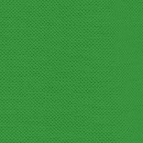 Mens Designer Clothing: Chlorophyll Green Lacoste Classic Pique Polo Shirt