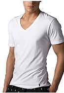 Polo Ralph Lauren Big & Tall V-Neck Tee