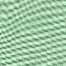 Eagle Shirtmakers: Soft Green Eagle Shirtmakers Big & Tall Non-Iron Dress Shirt