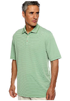 Tommy Bahama Superfecta Stripe Polo Knit
