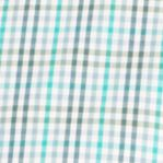 St Patricks Day Outfits For Men: Eco Green Van Heusen Short Sleeve Gingham Non-Iron Button Down Shirt