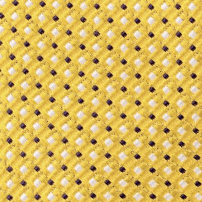 Young Mens Neckties: Yellow IZOD Filbert Neat Tie