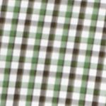 St Patricks Day Outfits For Men: Green Saddlebred 1888 Long Sleeve Mini Gingham Non-Iron Shirt