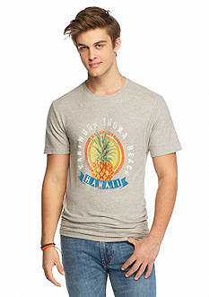 Chip & Pepper CALIFORNIA Pineapple Beach Graphic Tee