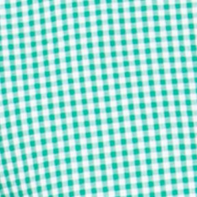 St Patricks Day Outfits For Men: Astro Green Chaps Gingham Poplin Shirt