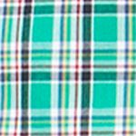 Mens Big and Tall Casual Shirts: Check & Plaid: Astro Green Chaps Big & Tall Plaid Poplin Shirt
