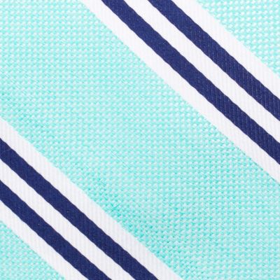 Young Mens Neckties: Aqua Nautica Bilge Stripe Tie