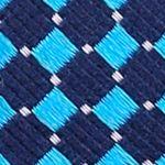 Mens Designer Ties: Aqua Nautica Parker Neat Tie