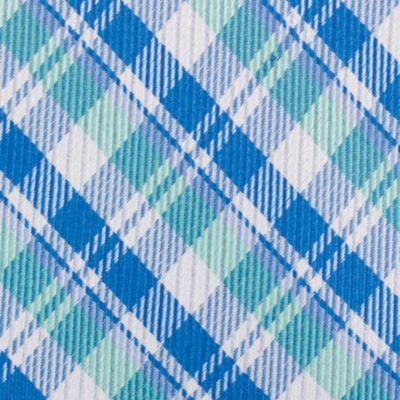 Mens Designer Ties: Mint Nautica Stockton Plaid Tie