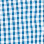 Young Mens Activewear: Fishing: Windswept Gingham Columbia PFG Super Bonehead Classic Long Sleeve Shirt