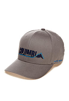 Columbia Fitted Logo Ballcap