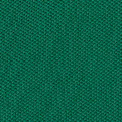 St. Patricks Day Outfits for Girls: Kayak Green Ralph Lauren Childrenswear 7 CTN-SS POLO SHIRT