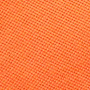 Toddler Boy Shorts: Bright Signal Orange Ralph Lauren Childrenswear 3 MESH-PO SHORT