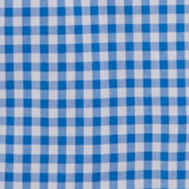 Baby & Kids: Ralph Lauren Childrenswear All Dressed Up: Light Blue Multi Ralph Lauren Childrenswear 1 POPLIN-LS BD SHIRT LIGHT BLUE M