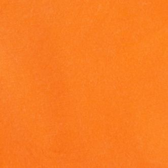 Ralph Lauren Boys: Vibrant Orange Ralph Lauren Childrenswear 3LT WT CANVAS-PREPPY SHORT BLUE BALLOON