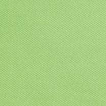 Ralph Lauren Girls: Citrus Lime Ralph Lauren Childrenswear 1 MESH-POLO SHIRT MARS PURPLE