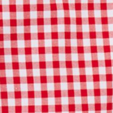 Baby & Kids: Button Front Sale: Red Multi Ralph Lauren Childrenswear Gingham Oxford Shirt Boys 4-7