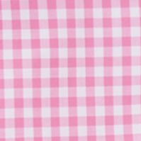 Little Boys Dress Clothes: Pink Multi Ralph Lauren Childrenswear Gingham Oxford Shirt Boys 4-7