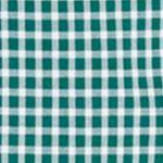 Little Boys Dress Shirts: Grn/Wht Polo Ralph Lauren Poplin Shirt Boys 4-7
