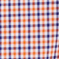Boys Button Down Shirts: Orange Multi Ralph Lauren Childrenswear 11 BLAKE BLUE MULTI