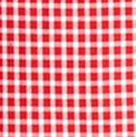 Boys Dress Clothes: Red Polo Ralph Lauren Poplin Shirt Boys 8-20