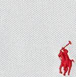 Boys Polo Shirts: Light Smoke Gray Polo Ralph Lauren Polo Shirt Boys 8-20