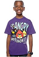 Angry Birds Screen Tee Boys 8-20