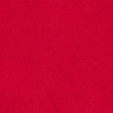 Boys Polo Shirts: Red Chaps SS BASIC SOLID POLO SHIRT