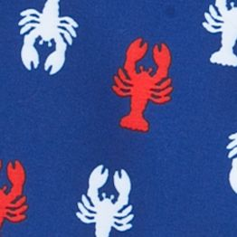 Little Boys Swimwear: Navy/Red Lobster J Khaki™ Swim Trunks Boys 4-7