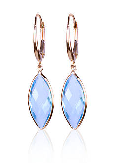 Belk & Co. Blue Topaz Drop Earrings in 14k Yellow Gold