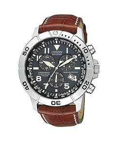 Citizen Men's Eco-Drive Perpetual Calendar Watch