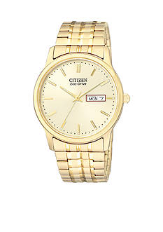 Citizen Eco-Drive Men's Expansion Band Watch