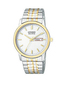 Citizen Eco-Drive Men's Expansion Band - Online Only