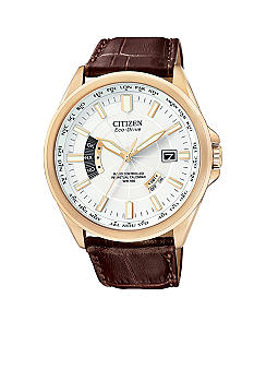 Citizen Eco Drive Men's World Perpetual  Watch