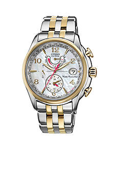Citizen Women's Eco-Drive World Time A-T Watch