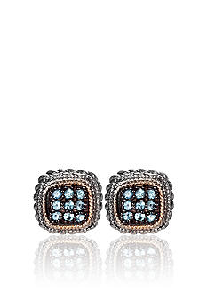 Belk & Co. Sterling Silver with 14k Gold Blue Topaz Earrings