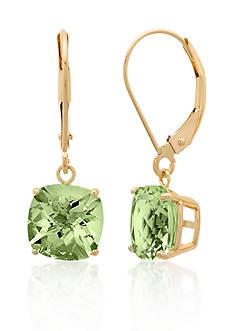 Belk & Co. 10k Yellow Gold Green Amethyst Earrings