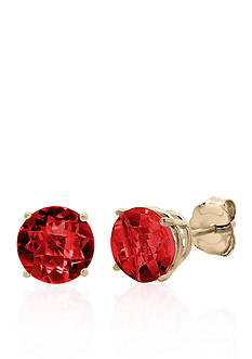 Belk & Co. 10k Yellow Gold Garnet Stud Earrings