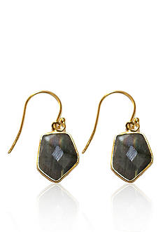 Argento Vivo Labradorite Earrings in 18k Gold over Sterling Silver