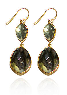 Argento Vivo Gold Framed Labradorite Teardrop Earrings