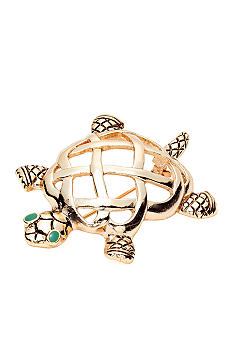 Napier Boxed Turtle Pin