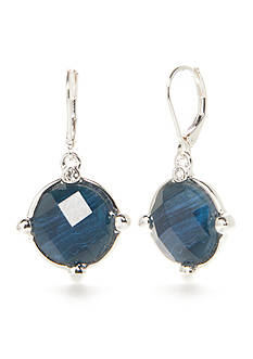 Napier Silver-Tone Oasis Blue Drop Earrings